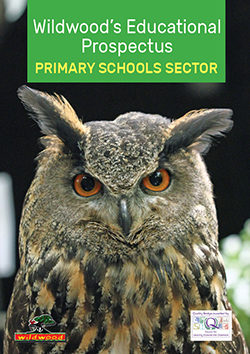 PRIMARY group brochure - web